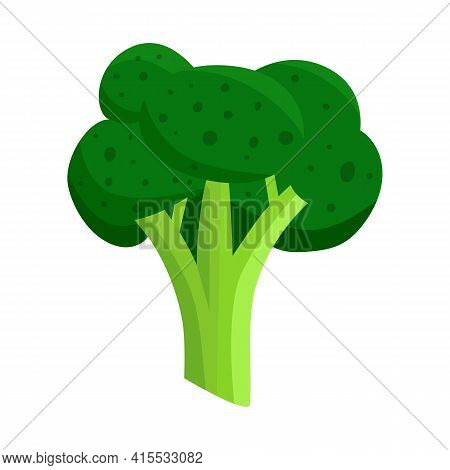 Vector Illustration Of Broccoli And Cabbage Icon. Set Of Broccoli And Doodle Stock Symbol For Web.