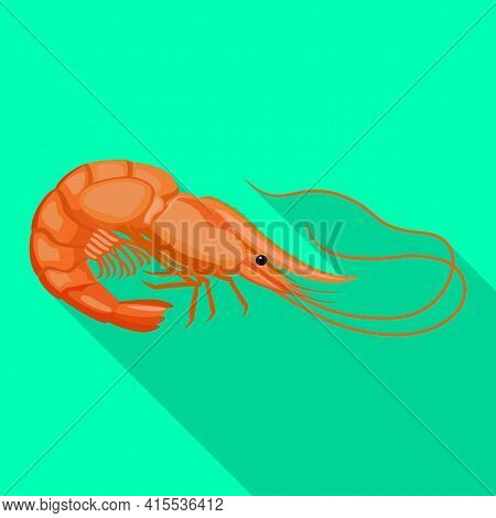 Shrimp Vector Icon.flat Vector Icon Isolated On White Background Shrimp .
