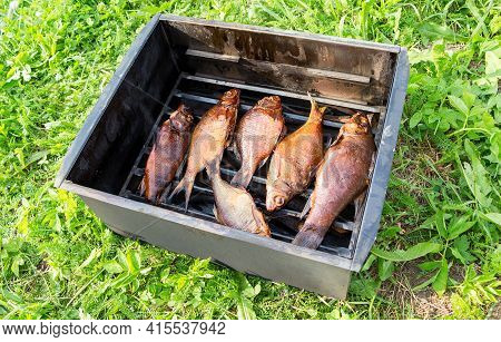 Appetizing Smoked Fish In Smokehouse On The Grass At The Outdoors