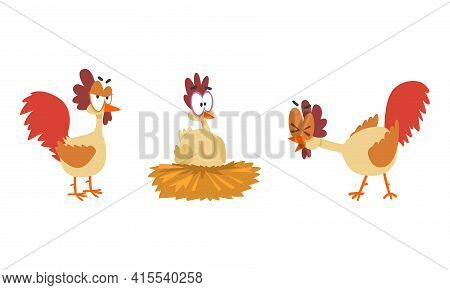 Funny Big Eyed Hen Set, Farm Bird Cartoon Character Cartoon Vector Illustration