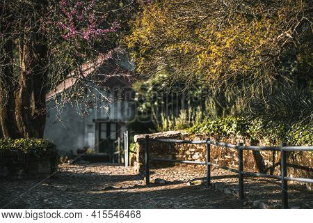 A Cozy Beautiful Courtyard Of A Summerhouse With A Triangle Roof In The Defocused Background And Spr