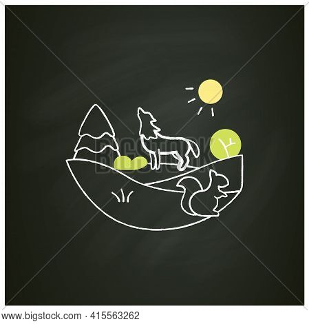 Temperate Forest Chalk Icon.forest Found Between Tropical, Boreal Regions, Located In Temperate Zone