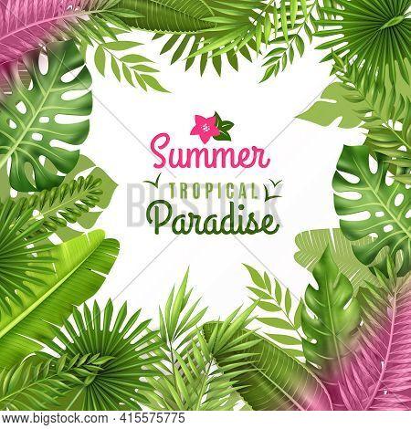 Summer Tropical Paradise Decorative Frame Or Background Dezign With Opulent Rainforest Plants Foliag