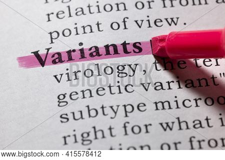 Fake Dictionary Word, Dictionary Definition Of Variants