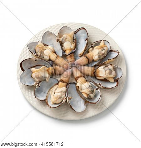 Plate with cooked soft shell clams in open shell for dinner isolated on white background