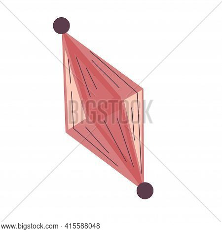 Crystal For Palmistry Isolated On White Background. Flat Illustration With Lines. Esoteric Vector. V