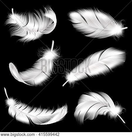 White Feathers Realistic Set. Falling Fluffy Twirled Bird Plume In Different Angle, 3d Flying Angel