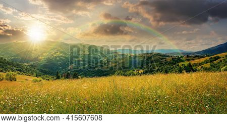 Rural Landscape With Blooming Grassy Meadow At Sunset. Beautiful Nature Scenery Of Carpathian Mounta