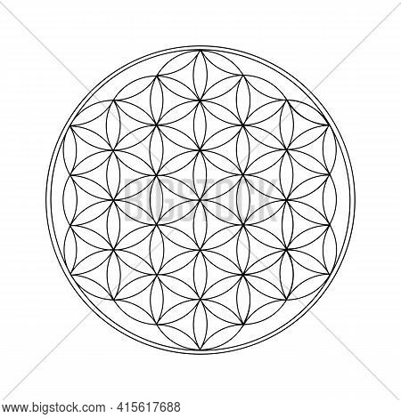 Flower Of Life Black Outline. Sacred Geometry. - Vector Illustration