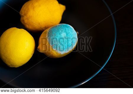 Three Whole Yellow Bright Lemons On A Dark Blue Plate. One Lemon With Light Turquoise Textured Mold,