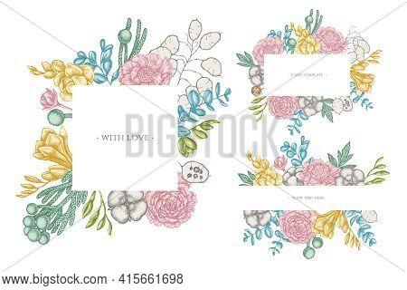 Floral Frames With Pastel Ficus, Eucalyptus, Peony, Cotton, Freesia Brunia Stock Illustration