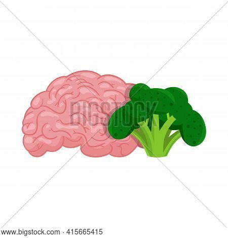 Vector Illustration Of Broccoli And Brain Sign. Set Of Broccoli And Benefit Stock Symbol For Web.