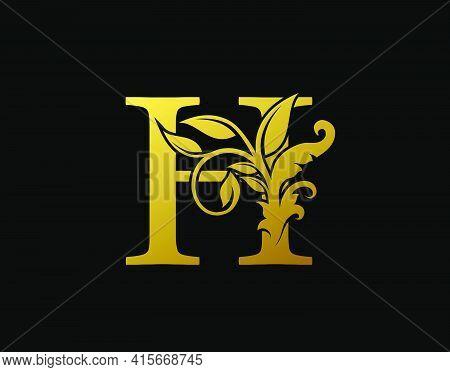 Luxury H Letter Design. Graceful Ornate Icon Vector Design. Vintage Drawn Emblem For Book Design, Br