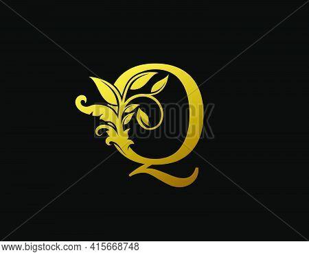 Luxury Q Letter Design. Graceful Ornate Icon Vector Design. Vintage Drawn Emblem For Book Design, Br