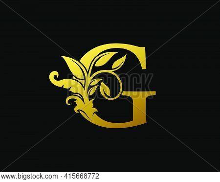 Luxury G Letter Design. Graceful Ornate Icon Vector Design. Vintage Drawn Emblem For Book Design, Br