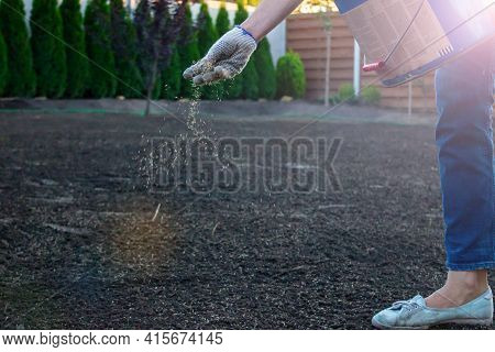 Small Seeds Come Flying Out Of The Hand Sowing Grass For The Perfect Lawn. Seeds Get Scattered As Un