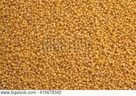 Millet Close Up, Millet Background, Millet Texture