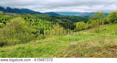 Rural Mountain Landscape In Spring. Grass And Trees On Hills Rolling Through The Green Valley In To