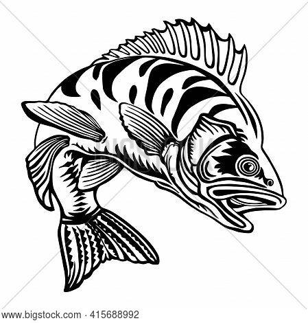 Perch Fish - Fishing Logo. Template Club Emblem. Fishing Theme Vector Illustration.