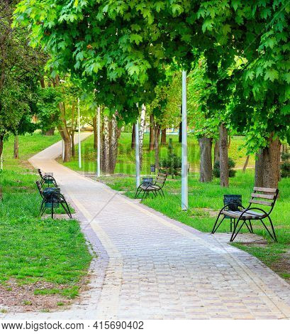 A Breezy Urban Summer Park Glows With Vibrant Green Foliage Along A Paved Walkway With Wooden Benche