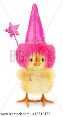 Cute cool chick good fairy tale with hat and magic wand funny conceptual image