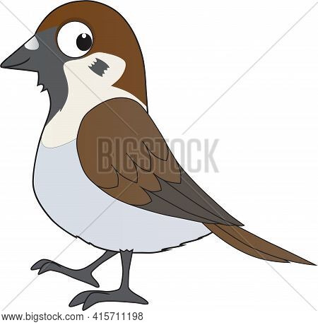 Cartoon Illustration Of A Java Sparrow Smiling Friendly