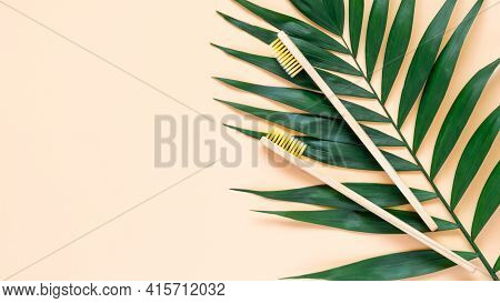 Eco-friendly Bamboo Toothbrush And Green Palm Leave On Pastel Beige Background. Two Natural Wooden T