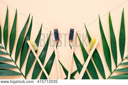 Eco-friendly Bamboo Toothbrushes And Green Palm Leaves On Pastel Beige Background. Natural Wooden To
