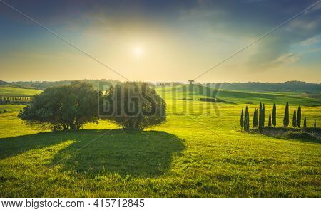 Sunset Landscape In Maremma Countryside. Rolling Hills And Trees. Bibbona. Tuscany, Italy, Europe