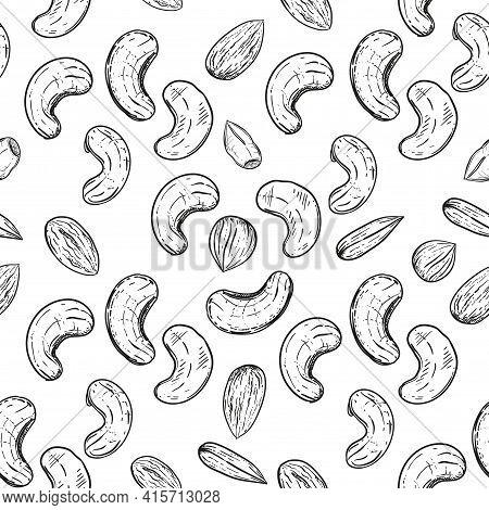 Hand Drawn Seamless Pattern Black And White Of Nuts, Peanuts, Almonds, Pecans, Cashews, Hazelnuts. V