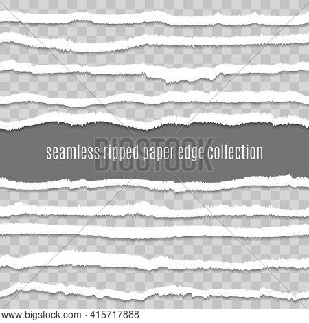 Transparent Paper Tears Edges. Tearing Paperes Vector Illustration, Torn Edged Textures Image, Seaml