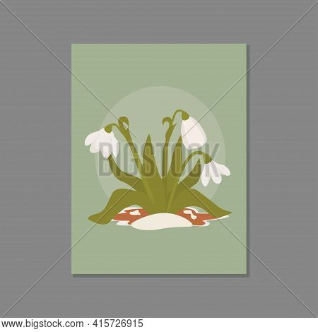 Snowdrops In The Snow. Symbol Of The Arrival Of Spring. The First Flowers.vector Illustration Can Be