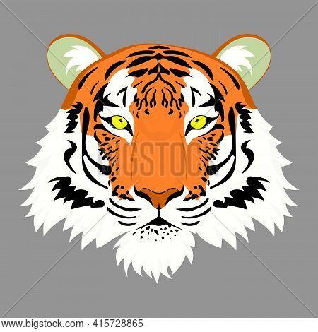 Red Tiger Portrait