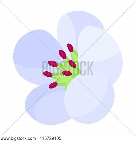 Flower Pear Vector Icon.cartoon Vector Icon Isolated On White Background Flower Pear.