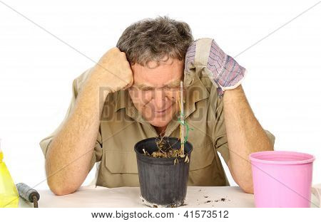 Disappointed Gardener