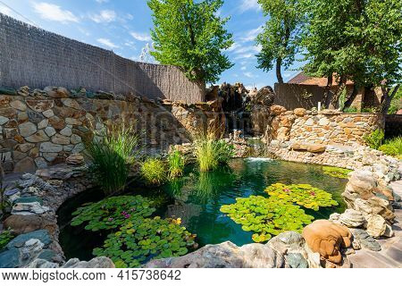 Pond Landscaping With Aquatic Plants And Water Lilies. Garden Decor