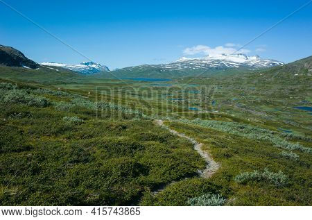 Hiking trail in Lapland. Arctic nature of Scandinavia in warm summer sunny day with blue sky, scandinavian landscape