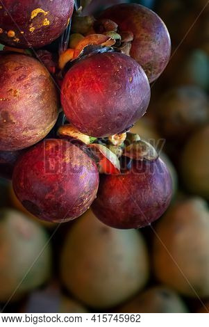 Fresh And Ripe Mangosteen On Display For Sale