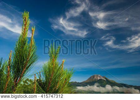 Mount Apo Landscape