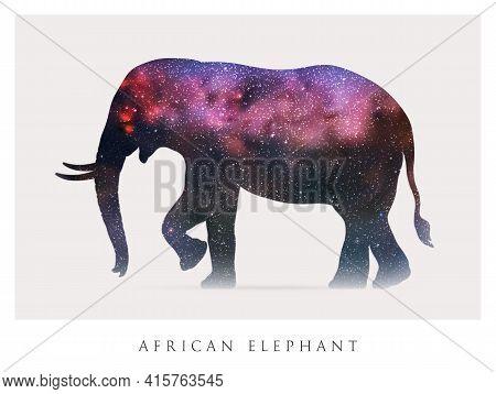 Elephant Silhouette. Abstract Animal Shape. Night Starry Sky