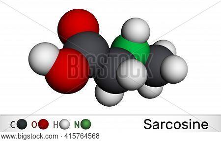 Sarcosine, N-methylglycine, N-alkylglycine Molecule. It Is Amino Acid Derivative, Conjugate Acid Of