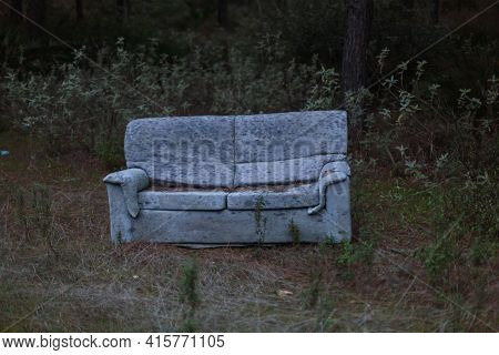 Sofa Abandoned In The Forest. Abandone. Sofa