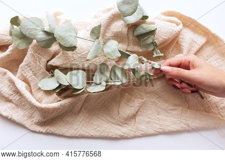 Female Hands Are Holding A Eucalyptus Branch. Background With Beige Plaid. Floral Composition. Femin