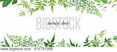 Tropical Forest Greenery Leaves, Branches, Jasmine Vine, Forest Fern, Herbs Natural Border, Frame, B