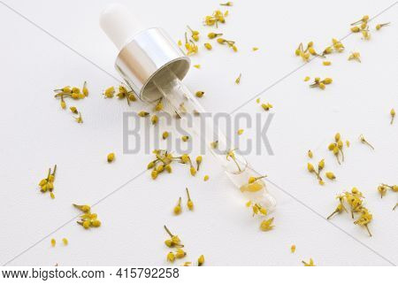 Flower Serum For The Face. A Dropper With A Moisturizing Serum Surrounded By Yellow Dogwood Flowers
