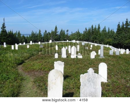 Old Salvage Graveyard