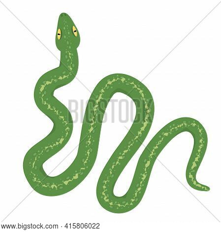Vector Illustration Of A Green Snake Isolated On A White Background