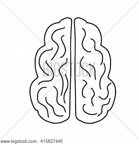 Human Brain Isolated On White Background. Mental Health. Psychological Issues. Thinking Symbol. Vect