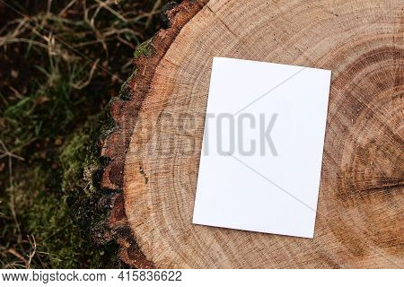 Invitation, Branding Mock-up. Blank Greeting Card, Leaflet On Cut Wooden Tree Trunk In Forest. Blurr