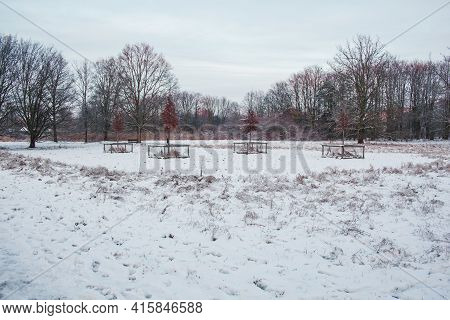 Winter Landscape In Braunschweig, Lower Saxony, Germany. Beautiful Snow Covered Westpark During Suns